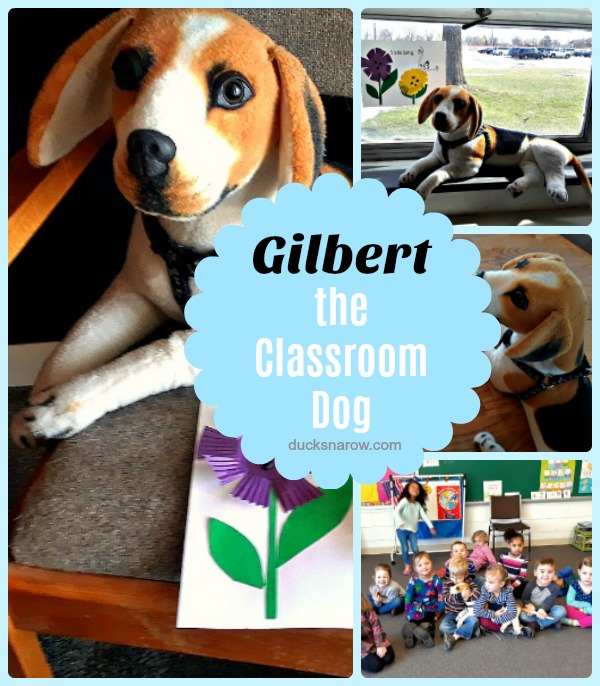 Plush toy animals make great classroom mascots #teaching