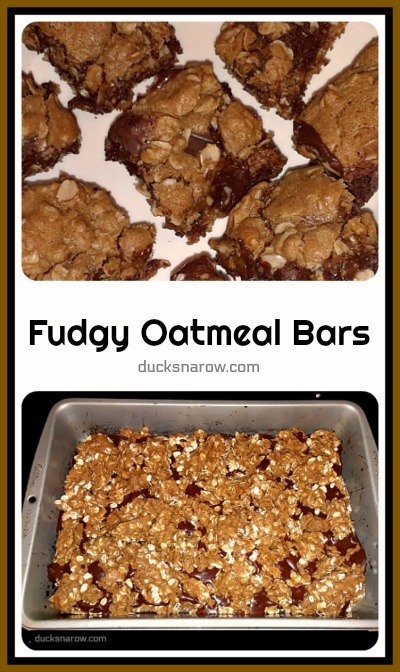 Best recipe >> fudgy chocolate oatmeal bars #recipes