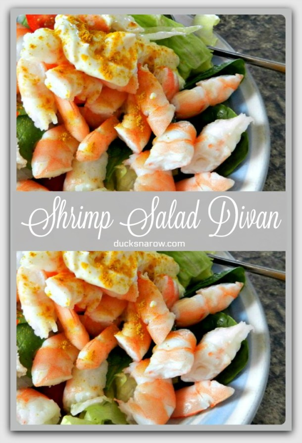 Shrimp Salad Divan Recipe #lowcarb