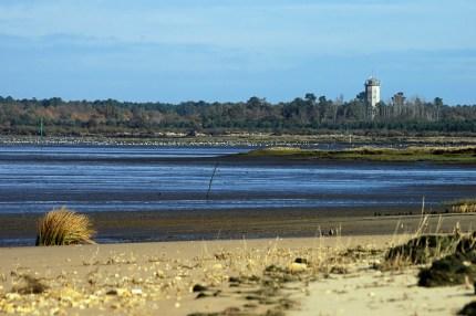 CP-DSC_3335-Audenge, bassin, plage