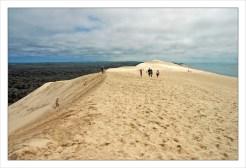 CP-DSC_7763-dune, forêt & océan