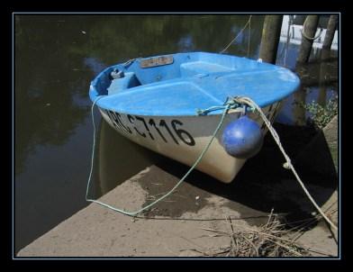 CP-IMG_5846-barque bleue