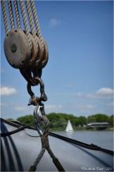 BLOG-DSC_35615- le Belem - Bordeaux fête le fleuve 2015