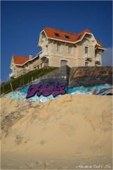 BLOG-DSC_39382-blockhaus et maisons jumelles Biscarrosse