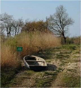 BLOG-DSC_8657-plaines du Teich