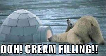 cream filling