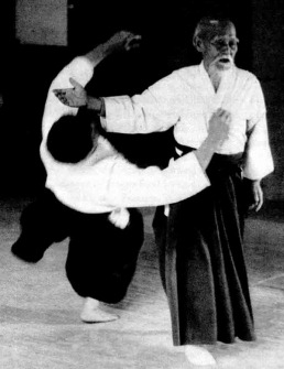 aikido_the_art_of_peace