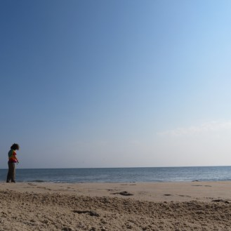 The Very Beginning at Cape Henlopen State Park in Delaware