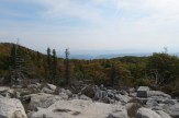 Bear Rocks Preserve in the Dolly Sods Wilderness