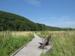 Great Swamp Boardwalk in Pawling, New York