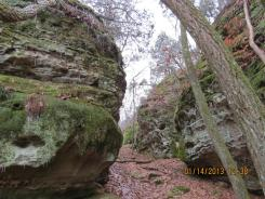 Sandstone in the Shawnee National Forest
