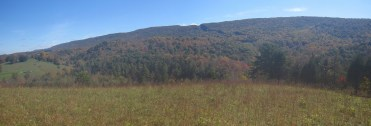 Sinking Creek Valley, Virginia Panorama