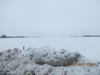 Snow in Lawrence, Kansas