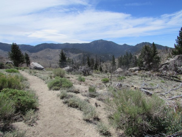 Trail in the South Sierra Wilderness