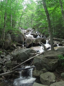 Zealand Falls in the White Mountains of New Hampshire
