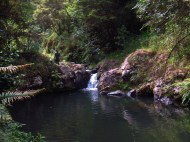 Magnus on the Wairoa River