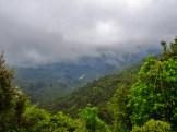 Cloudy Overlook on the Mangatawhiri Challenge Track in the Hunua Ranges