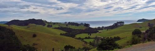 Punaruku Estuary Overlook Panorama
