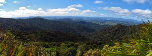Raetea Forest Overlook Panorama