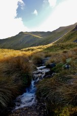 Stream in the St Arnaud Range in Nelson Lakes National Park