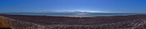 West Coast Beach of the Firth of Thames Panorama
