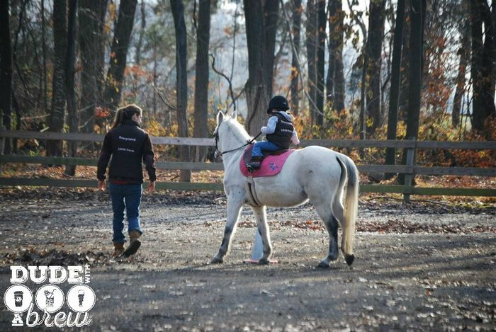 lily riding lesson fall