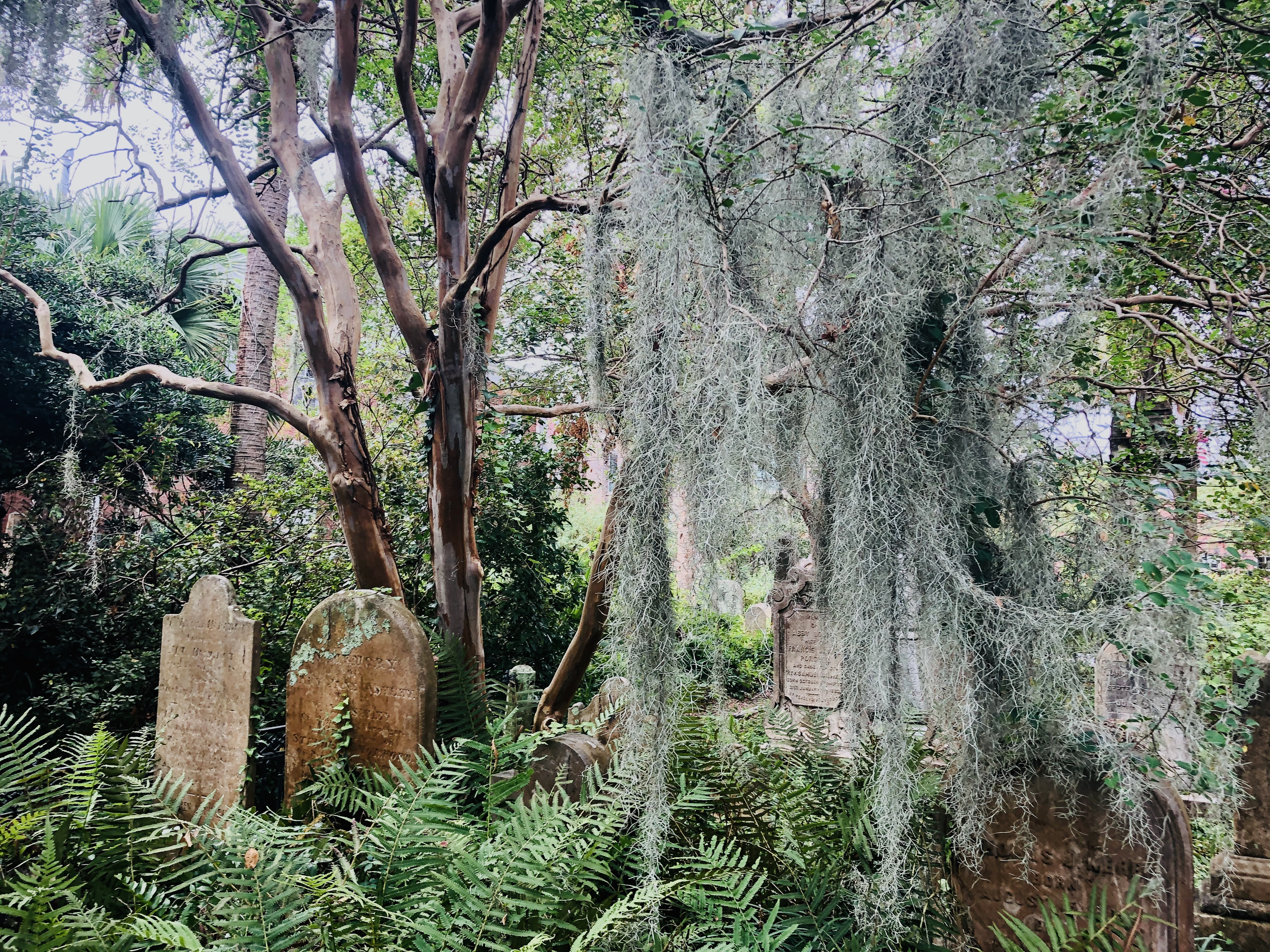 Getting Spooky With The Ghosts of Charleston Tour in Charleston, SC