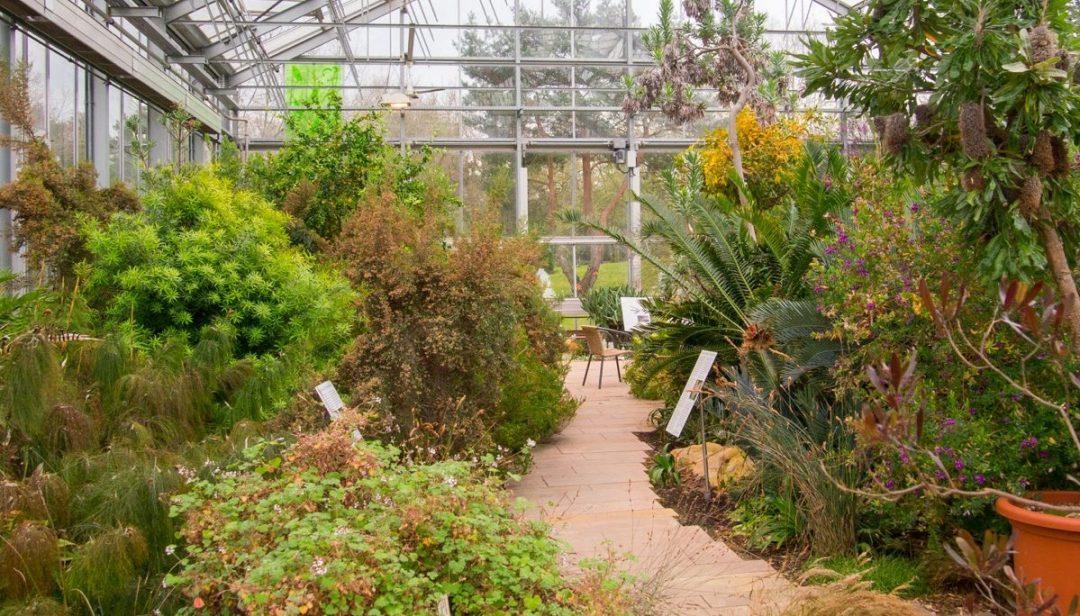 Botanical Garden - Düsseldorf
