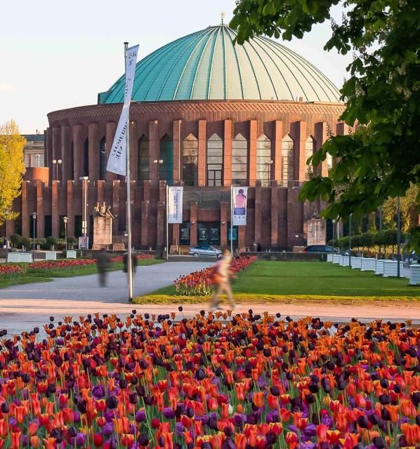 Flowers Near Tonhalle Düsseldorf