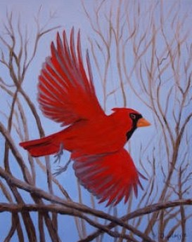 Cardinal by Duplassie Designs - 11x14 - Oil