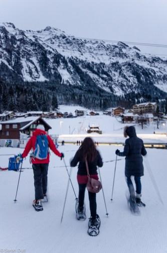Snowshoeing in Wengen