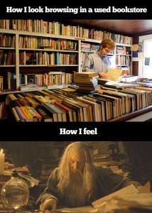 funny-search-library-Gandalf