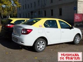 dugheana-de-printuri-colantare-taxi-2