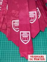 dugheana-de-printuri-cravate-personalizate-scoala-gimnaziala-ghergheasa-4