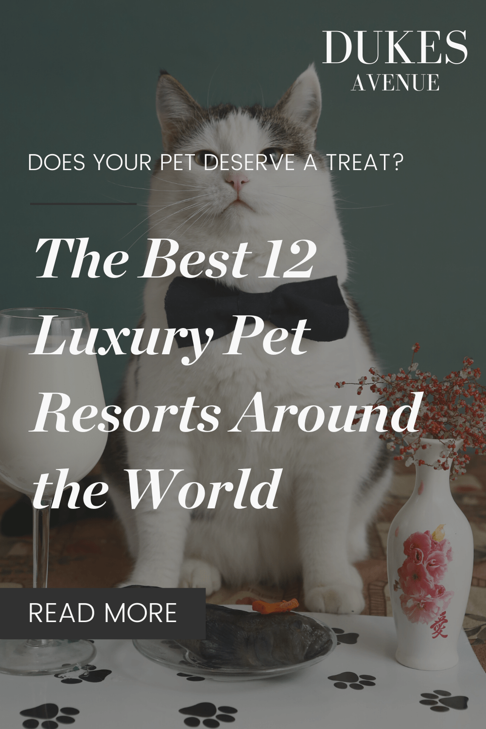 Best Pet Resorts Around the World Pin