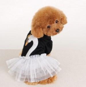 ropa perros