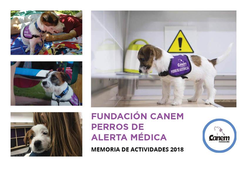 Memoria de Actividades de la fundación de 2018.