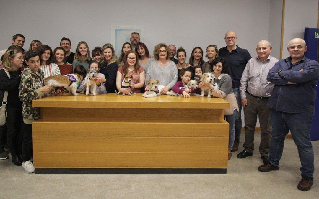 Entrega de perros de alerta médica, noviembre de 2018.