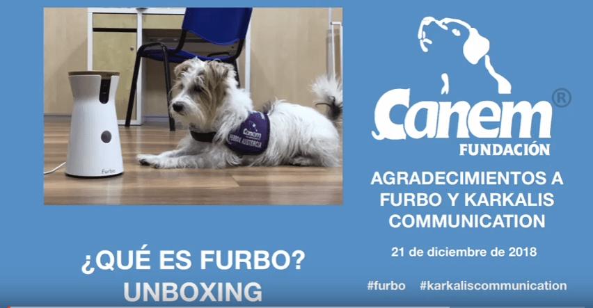Qué es FURBO – Unboxing del dispensador de comida a distancia para mascotas