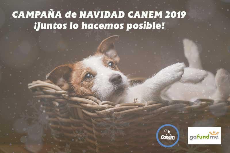 CAMPAÑA DE NAVIDAD SOLIDARIA DE FUNDACIÓN CANEM