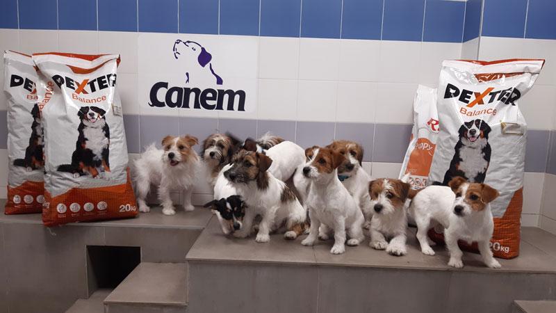 Donación de pienso de Agroveco para los cachorros en formación