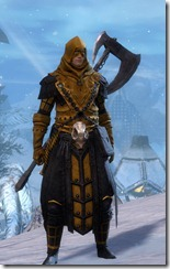 Guild Wars 2 Update – Halloween Costume and Nvidia Driver Update