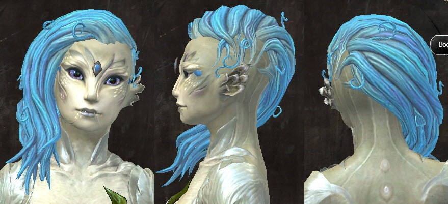 GW2 New Hairstyles In Wintersday Patch Dulfy