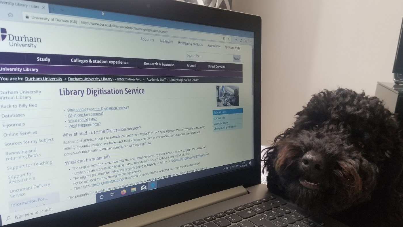 Library Digitisation Service and Furry Friends