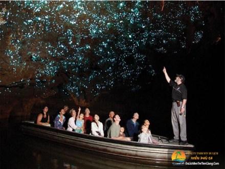 Tour du lịch xem đom đóm trên sông
