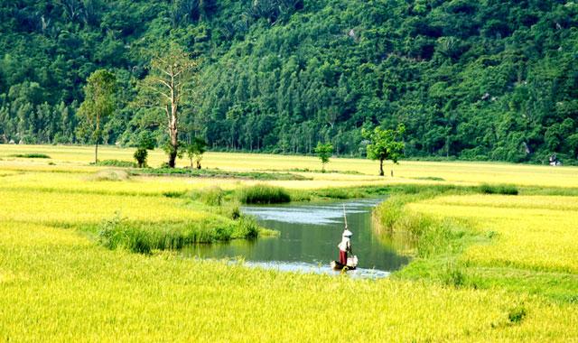 Theo chân phim Việt khám phá vẻ đẹp của miền Trung