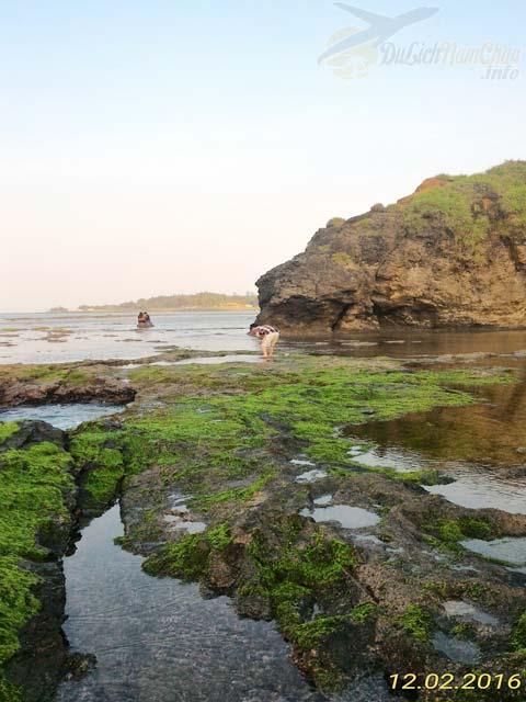 Biển Lệ Thủy lãng mạn với rêu xanh phủ đá