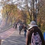 Gợi ý đi du lịch Seoul tự tục 5 ngày chỉ với 11 triệu đồng