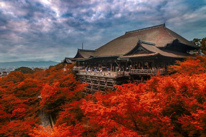 Ghé thăm những ngôi đền Phật giáo ở Kyoto