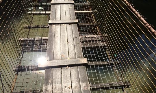 hanging Bridge 2